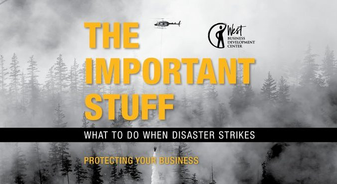 "Image: Disaster scene titled ""The Important Stuff: What to Do When Disaster Strikes"""