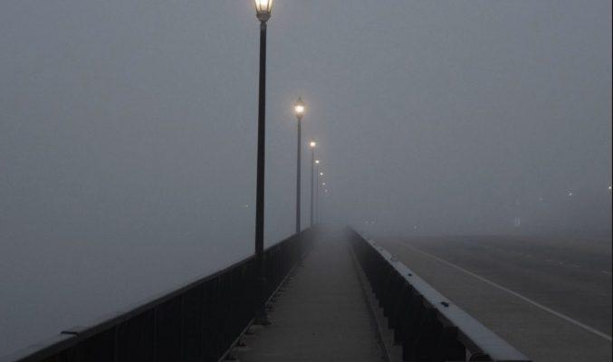 Foggy bridge - Coast Women in Business