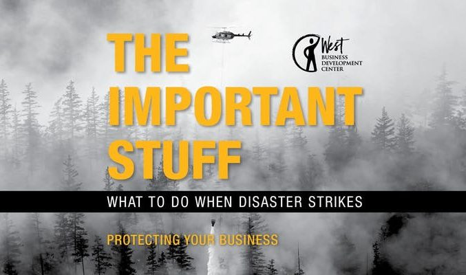 "Image: book cover: ""Important Stuff: What to Do When Disaster Strikes"""