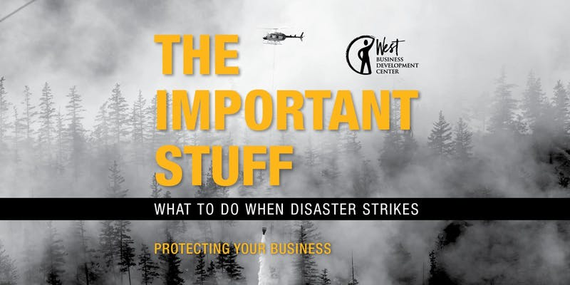 "Book cover: ""Important Stuff: What to Do When Disaster Strikes"""