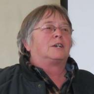 Donna Feiner